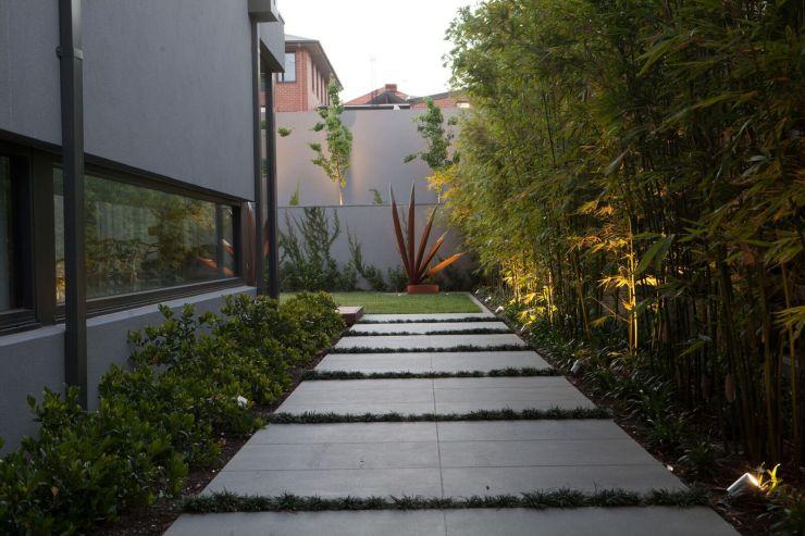Camberwell garden 35